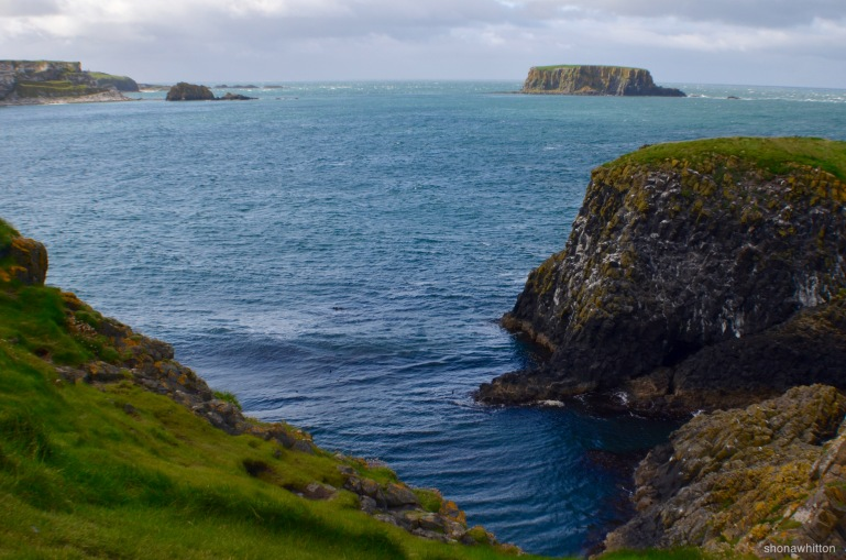 The wild coast. Carrick-a-Rede, Northern Ireland.