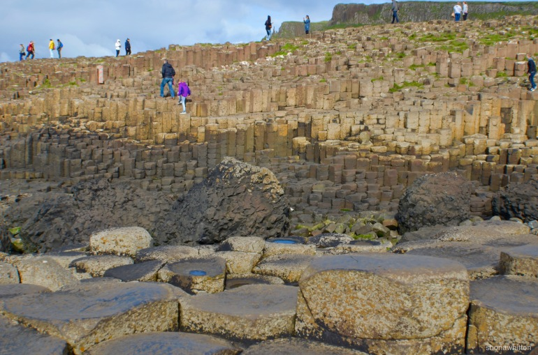 No giants spotted during the taking of this photo. Giant's Causeway, Northern Ireland.